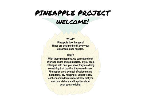 Pineapple Image with text describing the projects